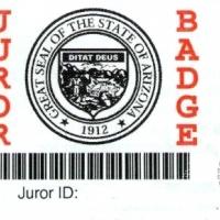 15. Бейдж присяжного (США)